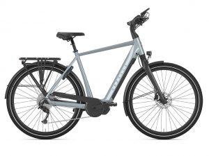 Chamonix T10, grau, Gazelle E-Bike, Fahrrad Walter