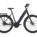 Ultimate, E-Bike, Fahrrad, Fahrrad Walter, Gazelle