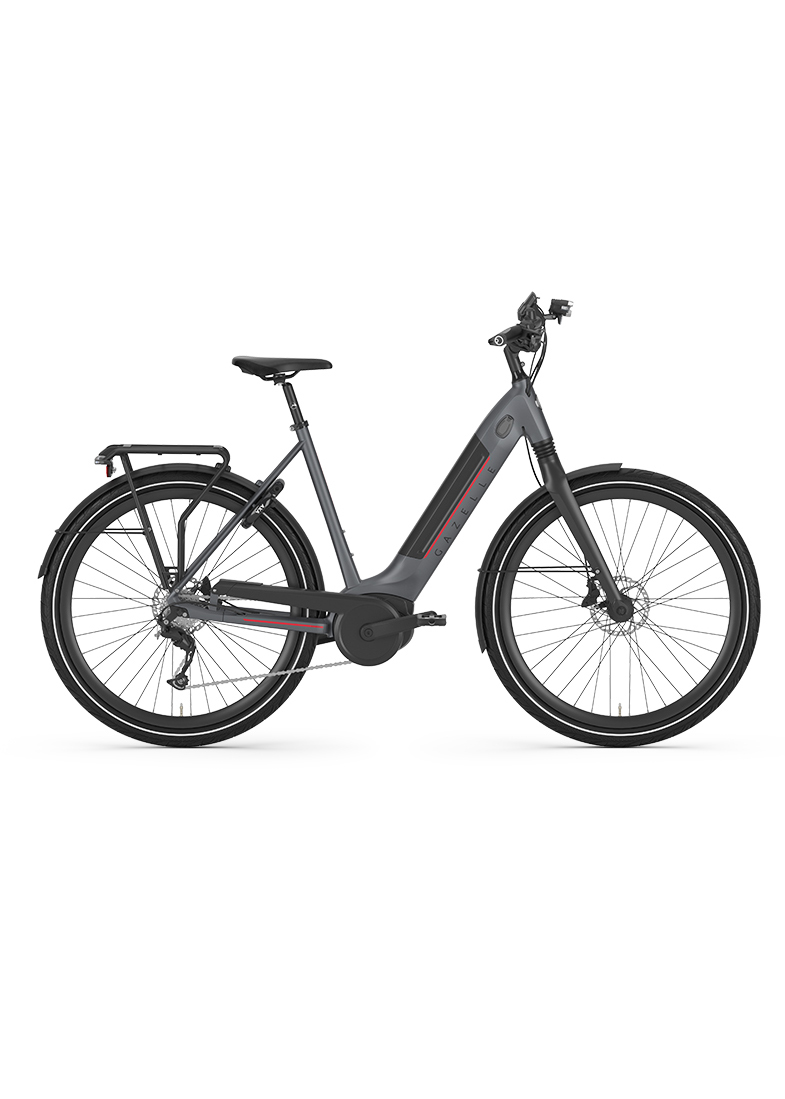ultimate, E-Bike, Fahrrad Walter, Gazelle